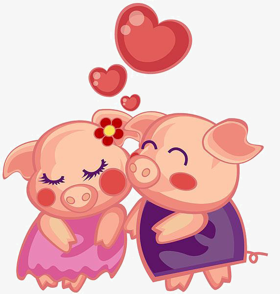 Couple clipart pig. Cartoon material png image