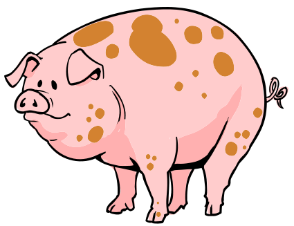 Pork drawing cartoon. Images of pigs group