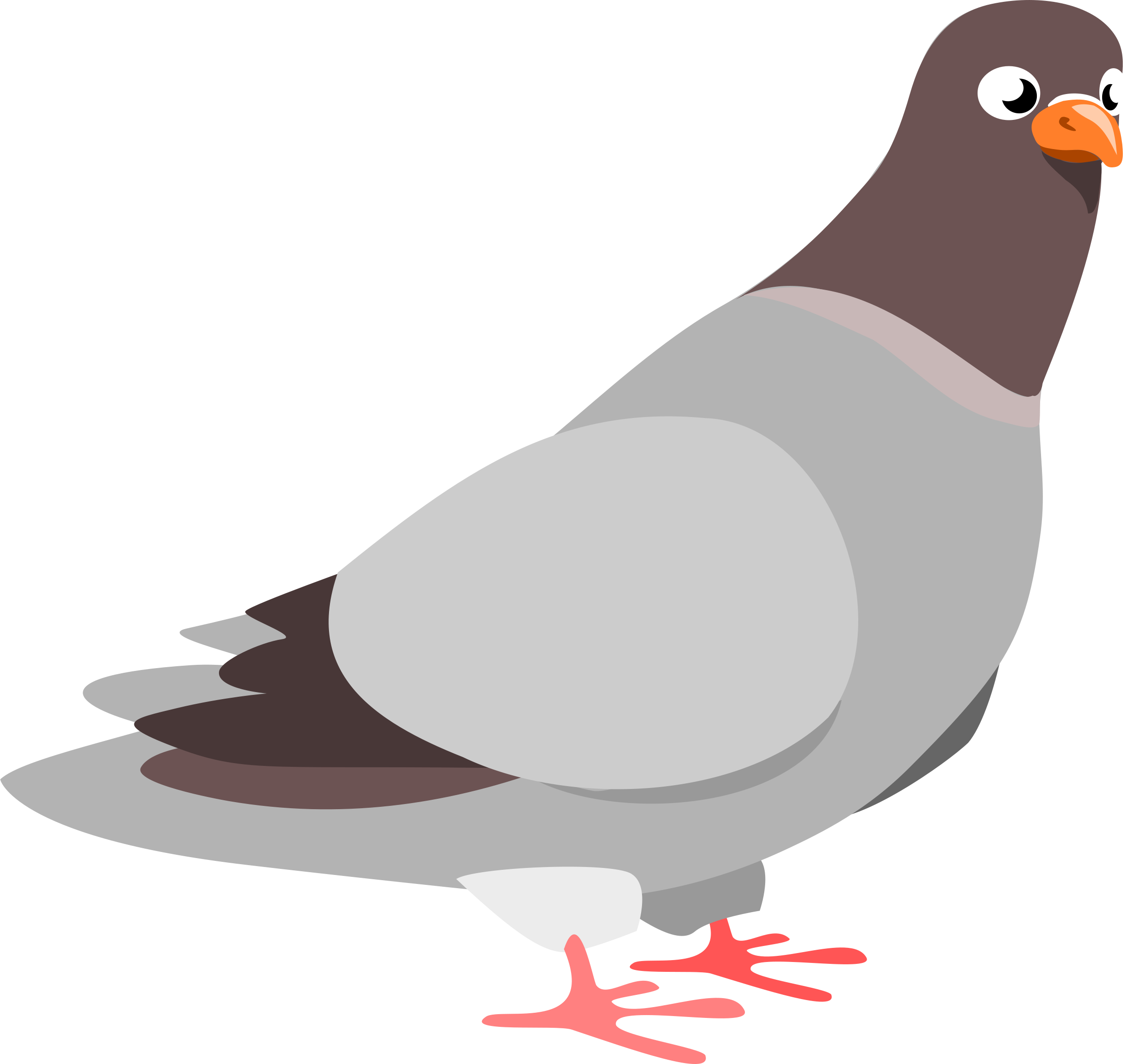 Pigeon clipart cartoon free library