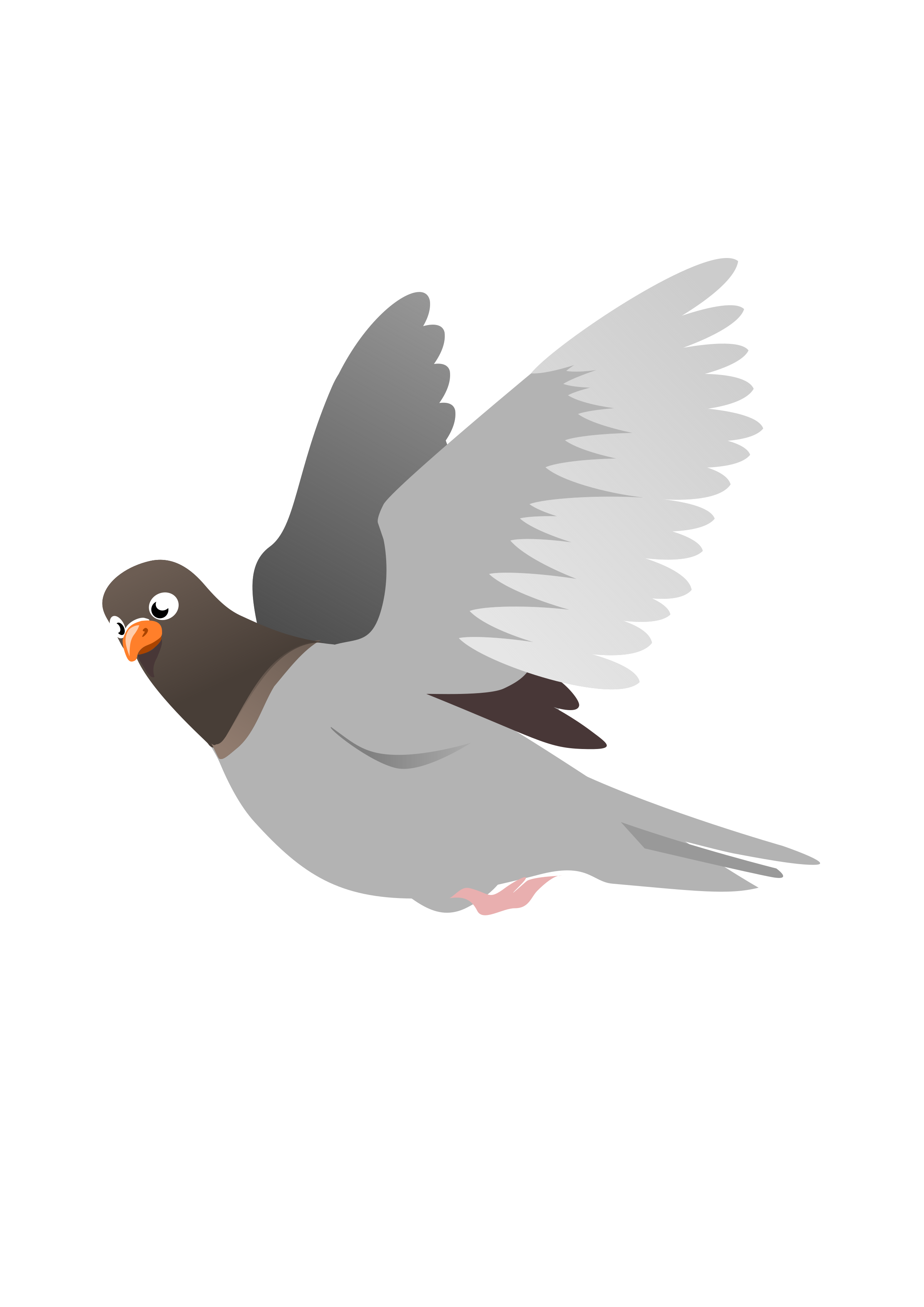 Pigeon clipart. A flying big image