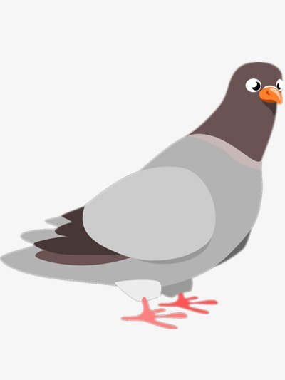 Hand painted pigeons birds. Pigeon clipart cartoon picture free library