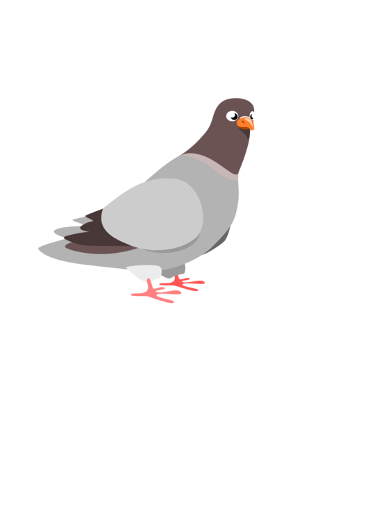 Synonym meaning definition word. Pigeon clipart cartoon royalty free download
