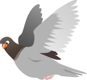 Pigeon clipart pegion. Flying