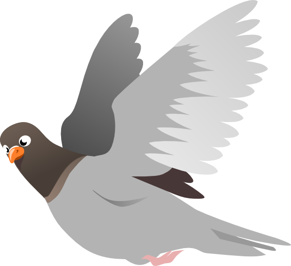 A flying clip art. Pigeon clipart cartoon picture transparent