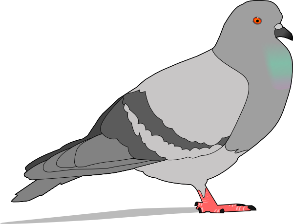Clip art at clker. Pigeon clipart cartoon banner freeuse stock