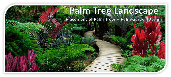 Pigmy palm png. Tree landscape placement of
