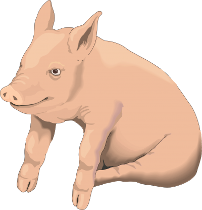Pigs clipart transparent background. Gallery isolated stock photos