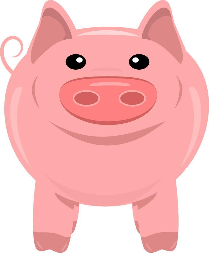Pigs clipart transparent background. Best free and
