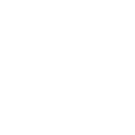 Pillar drawing faith. The legacy of library