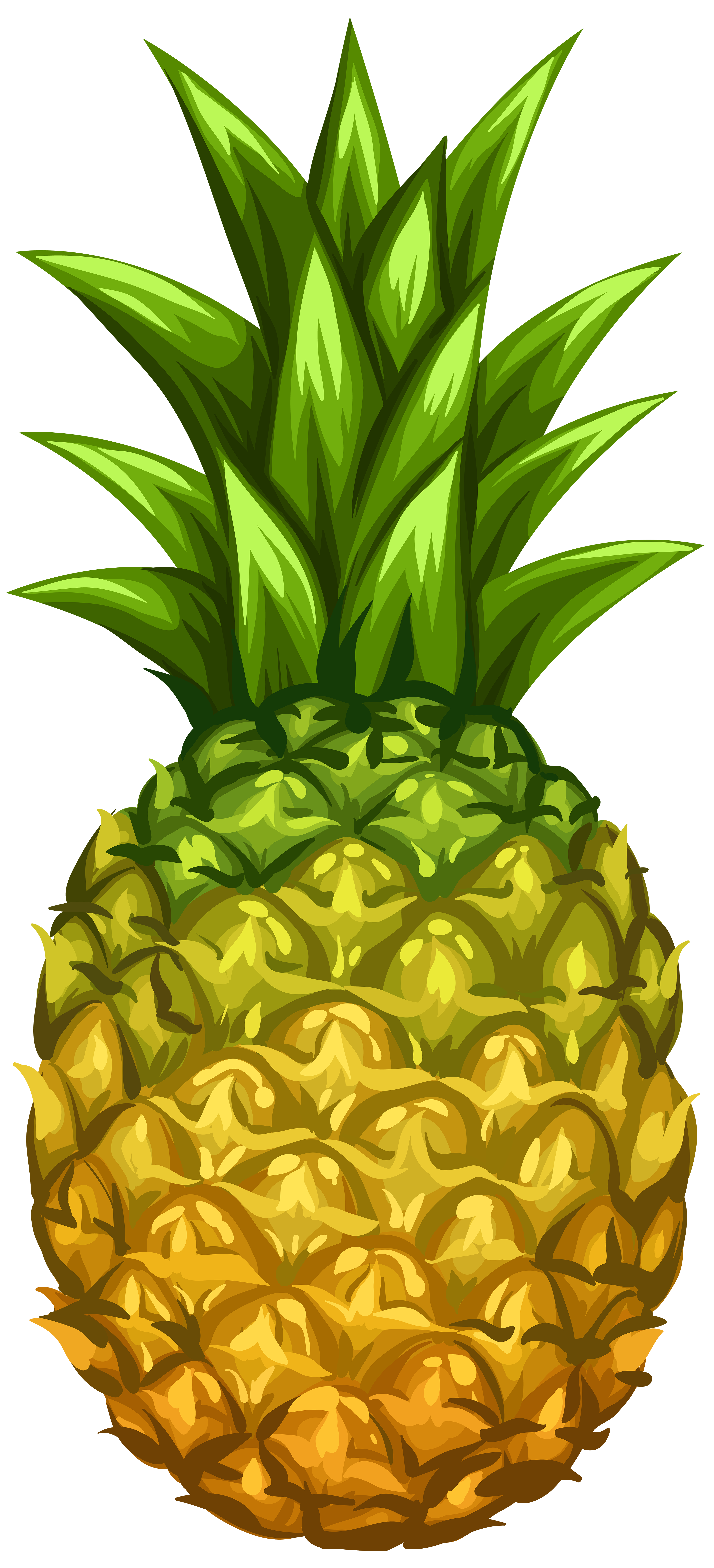 Pineapple png. Clip art image gallery