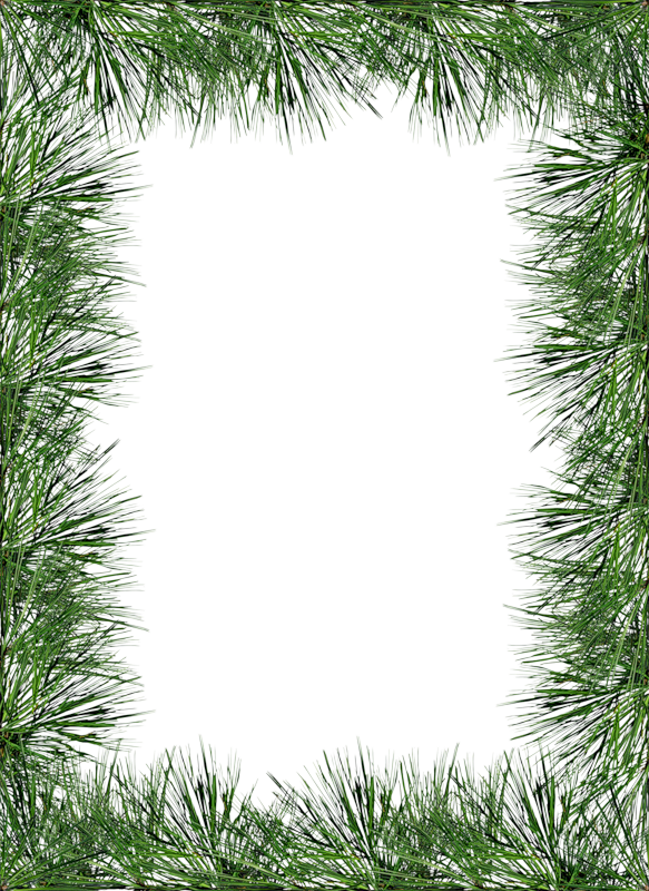 pine border png