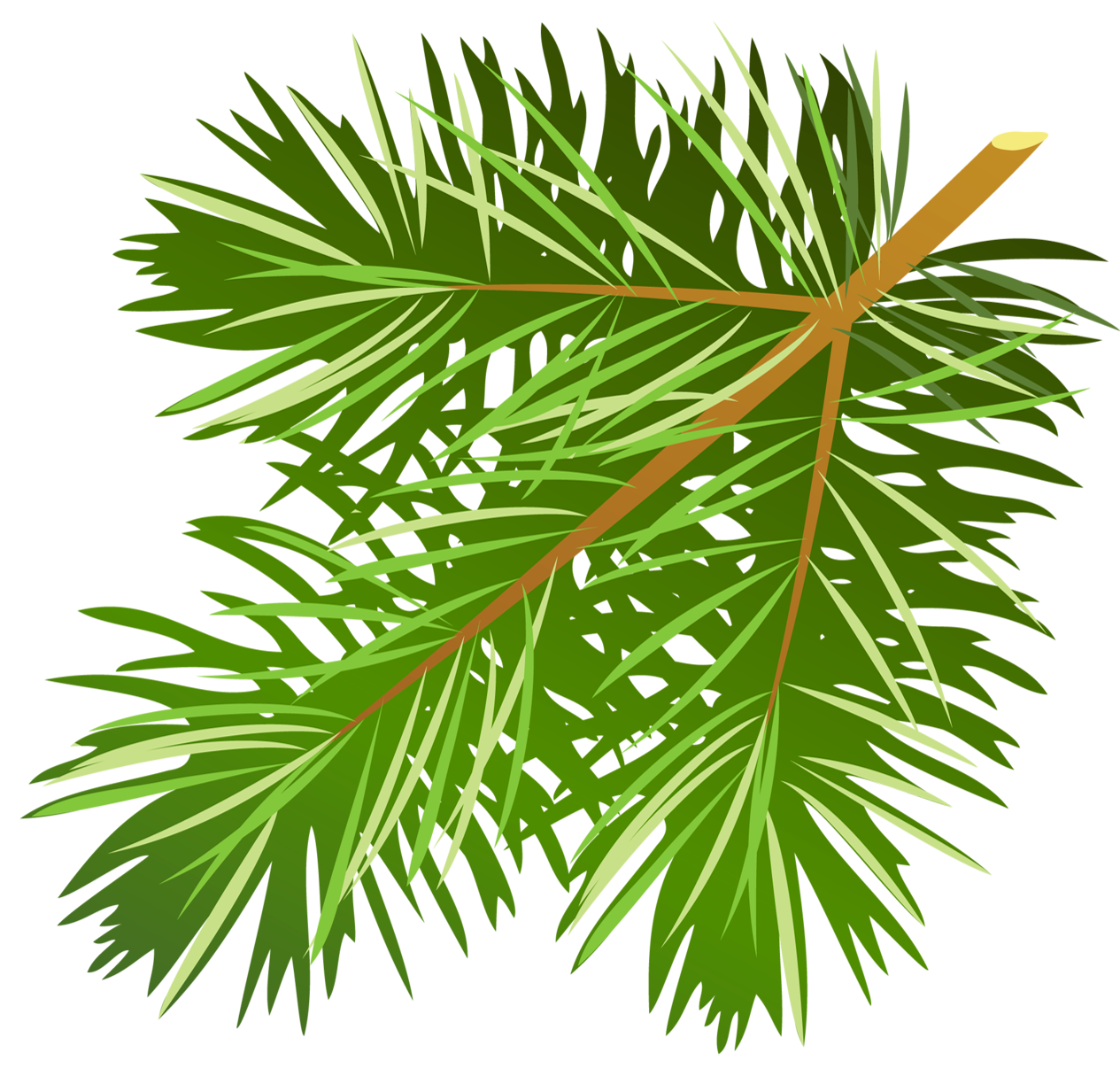 Pine boughs png free. Transparent branch clipart gallery