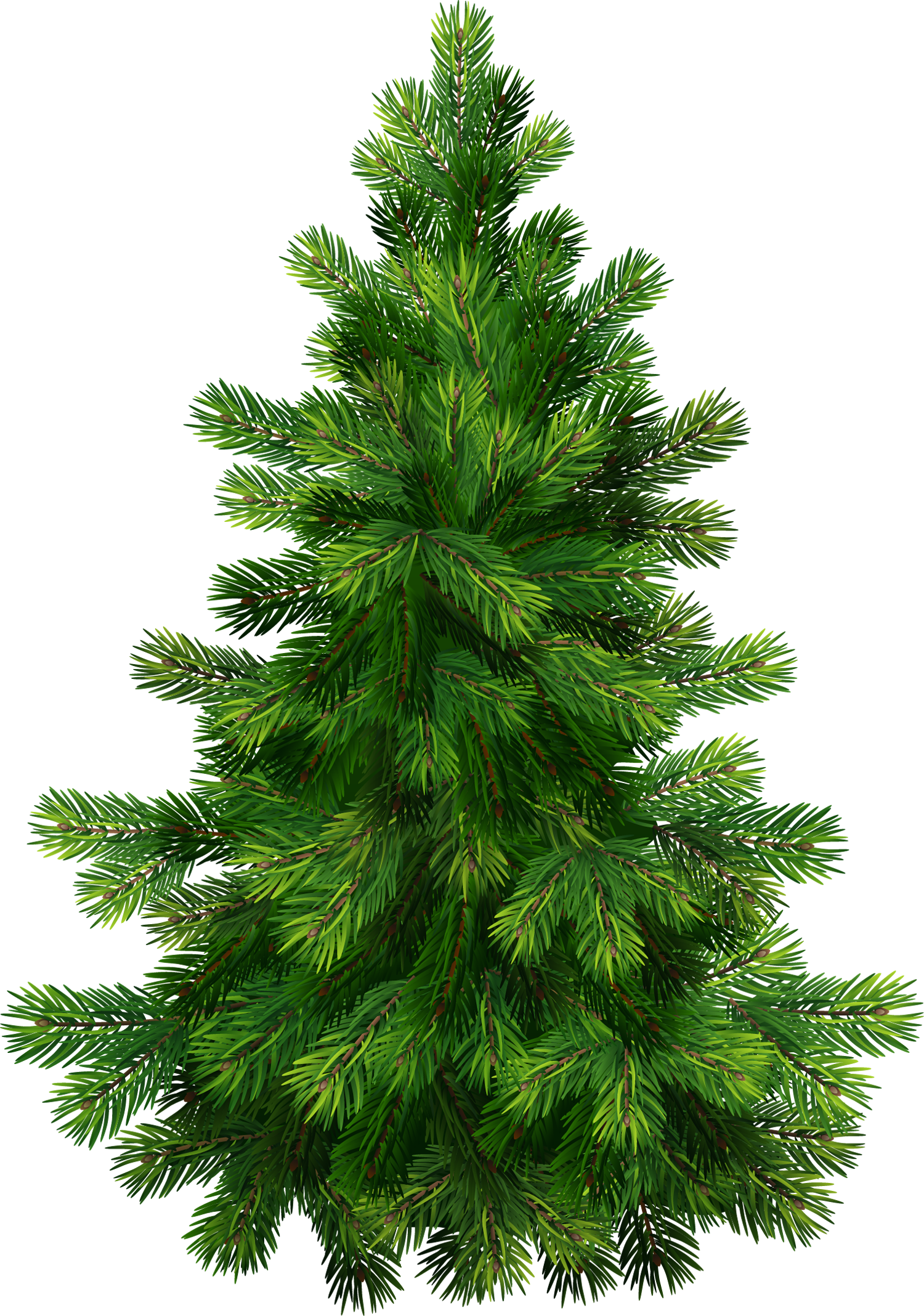 Christmas pine tree png. Transparent clipart gallery yopriceville