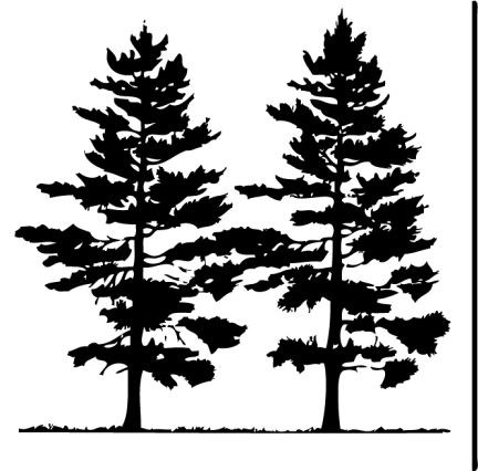 Pine clipart bunch tree. Free clip art pictures