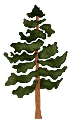 Pine clipart bunch tree. Drawing clip art at