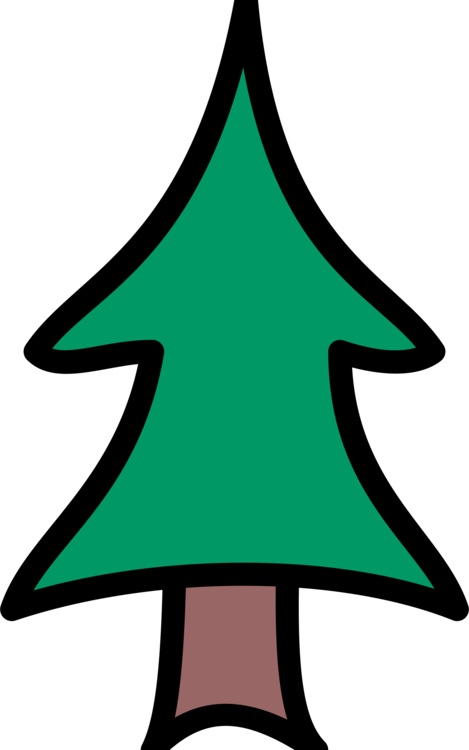 Pine clipart coniferous tree. Drawing christmas conifers free