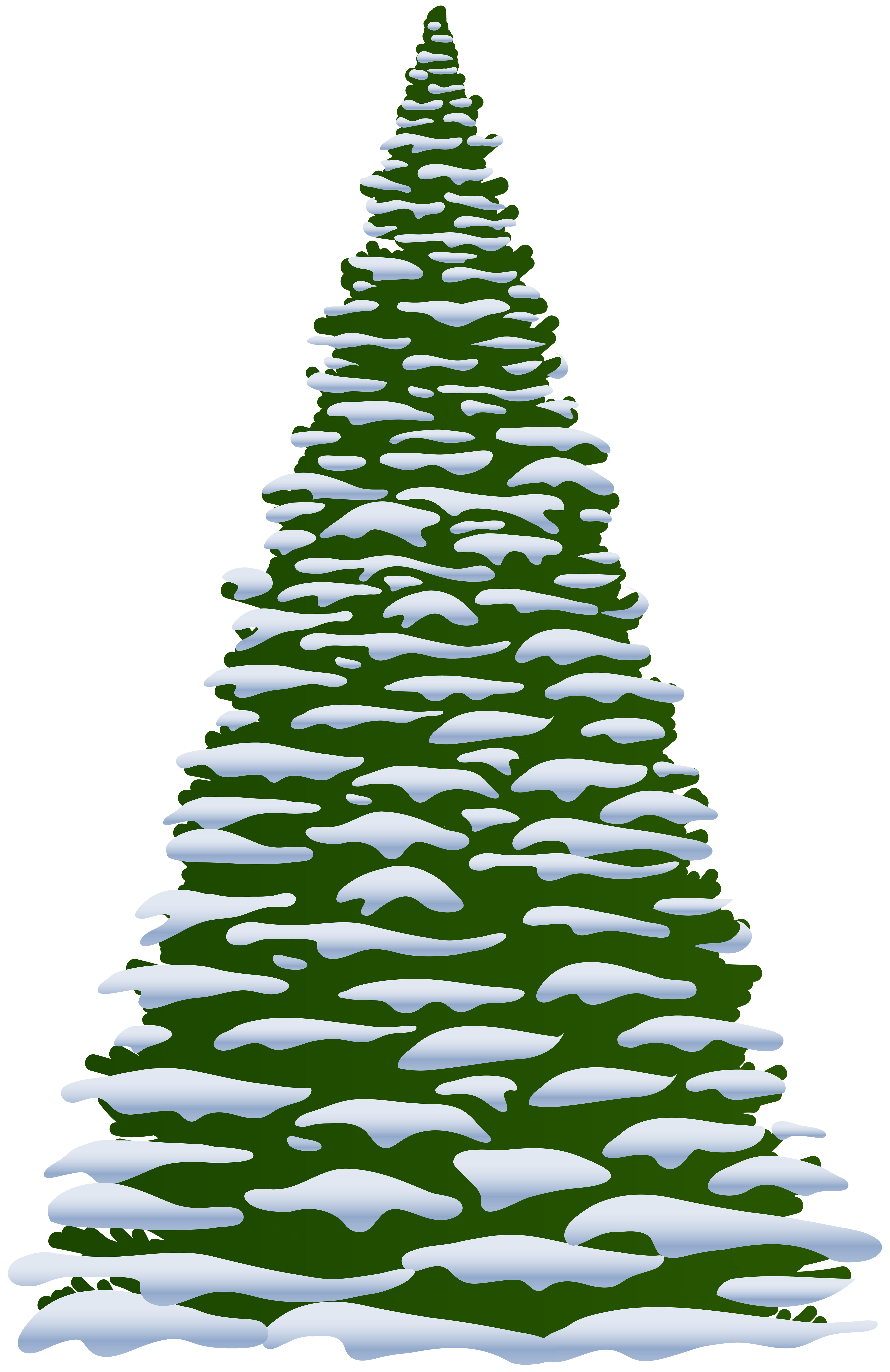 Pine clipart fine tree. Pin by winter s