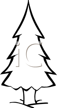 Pine clipart fine tree. Panda free images pineclipart