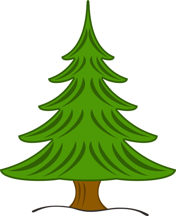 Pine drawing fir tree. Christmas spruce free commercial