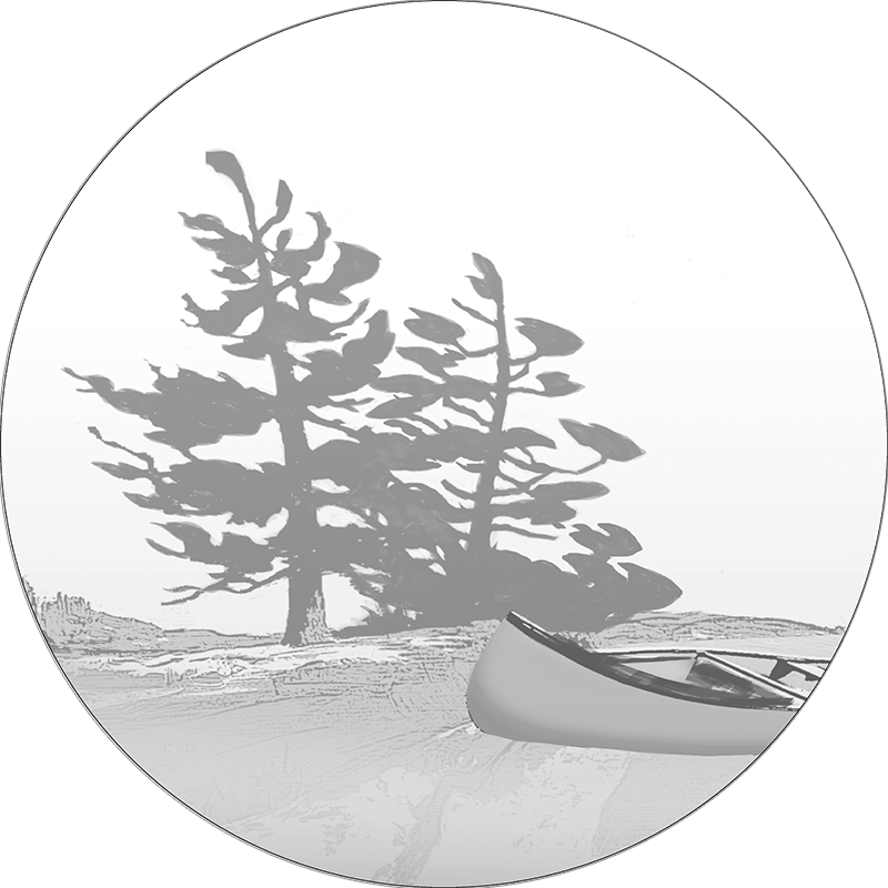 Pine drawing shore. Help get a canoe