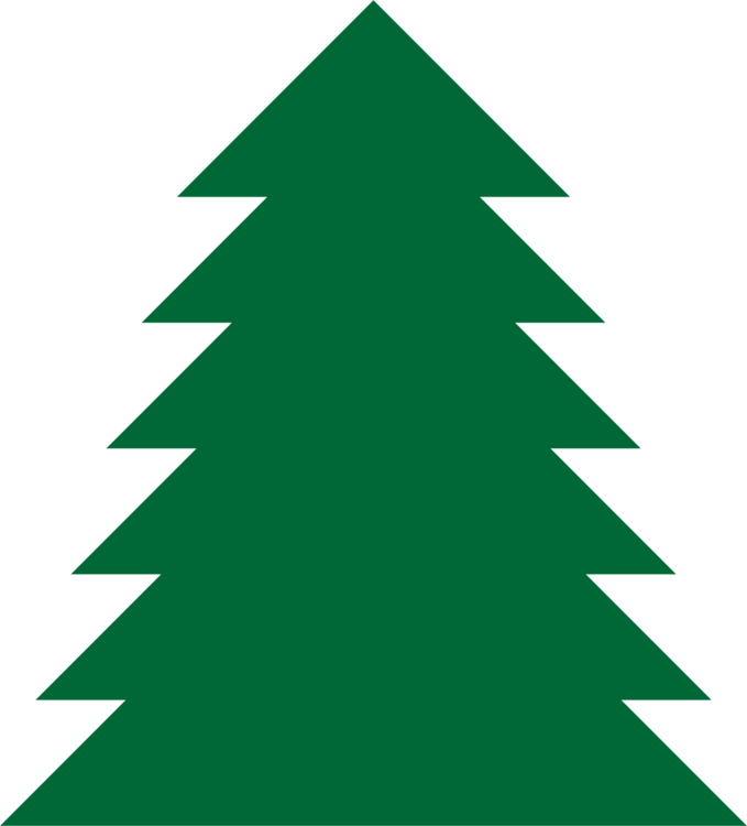 Pine drawing simple. Tree fir spruce free