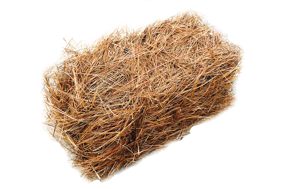 Pine straw png. Mid americamulch