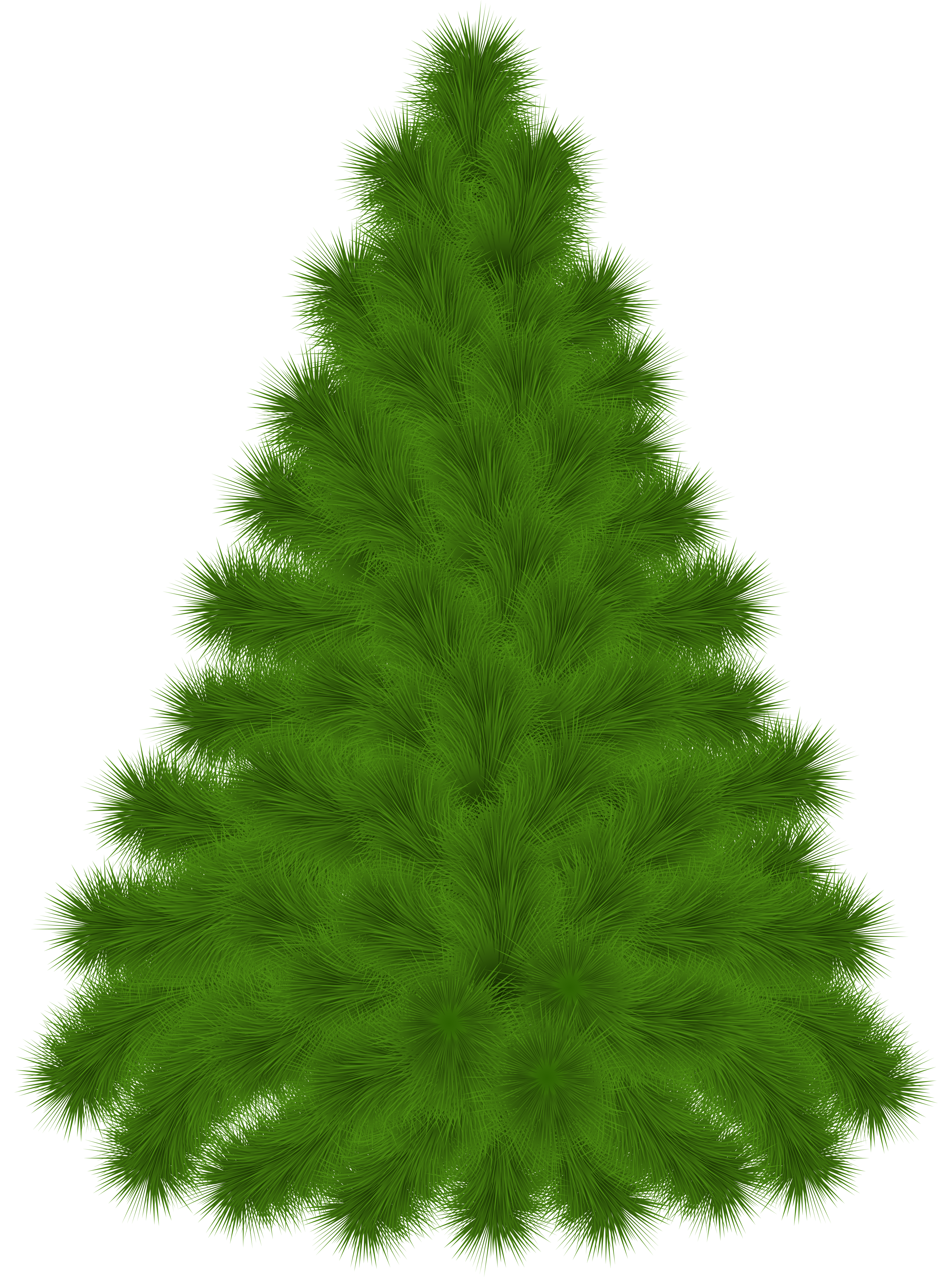Tree clipart picture gallery. Png pine trees jpg freeuse