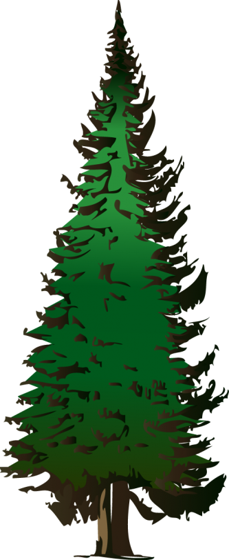 Pine trees clipart png. Tree silhouette clip art