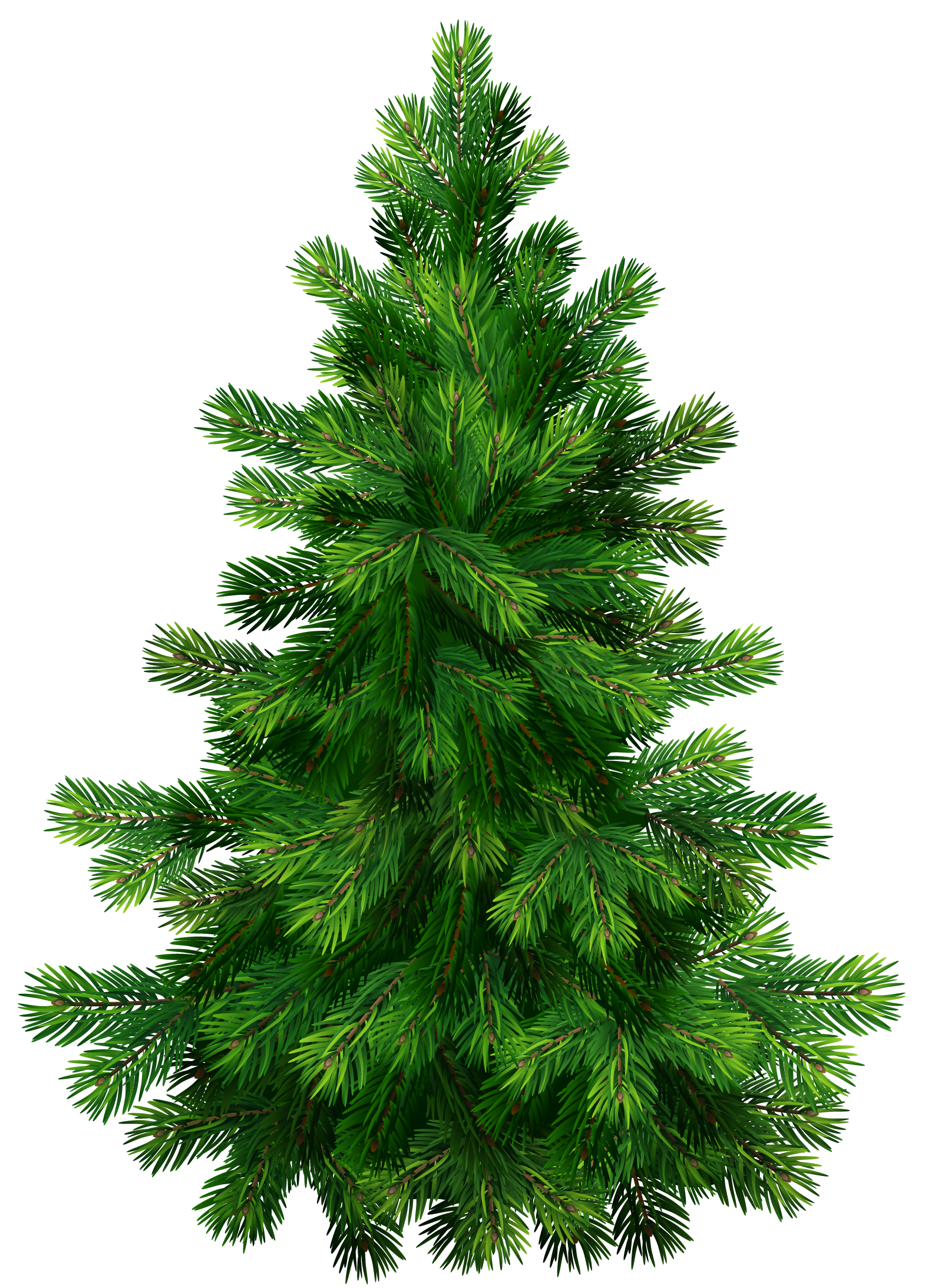 Pine trees png. Transparent tree clipart picture