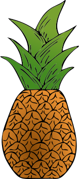 Pineapple clipart. Juicy uncut png