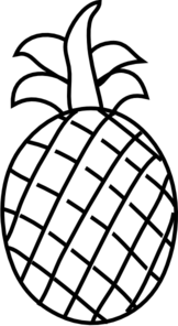 white drawing pineapple