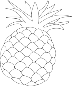 Pineapple outline png. Clip art library
