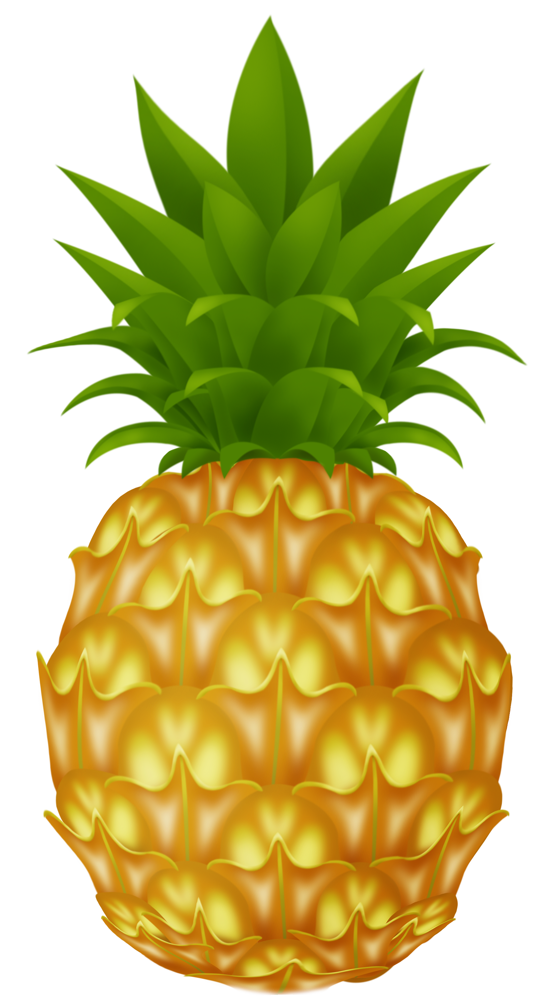 Fruits clipart png. Pineapple picture clip art