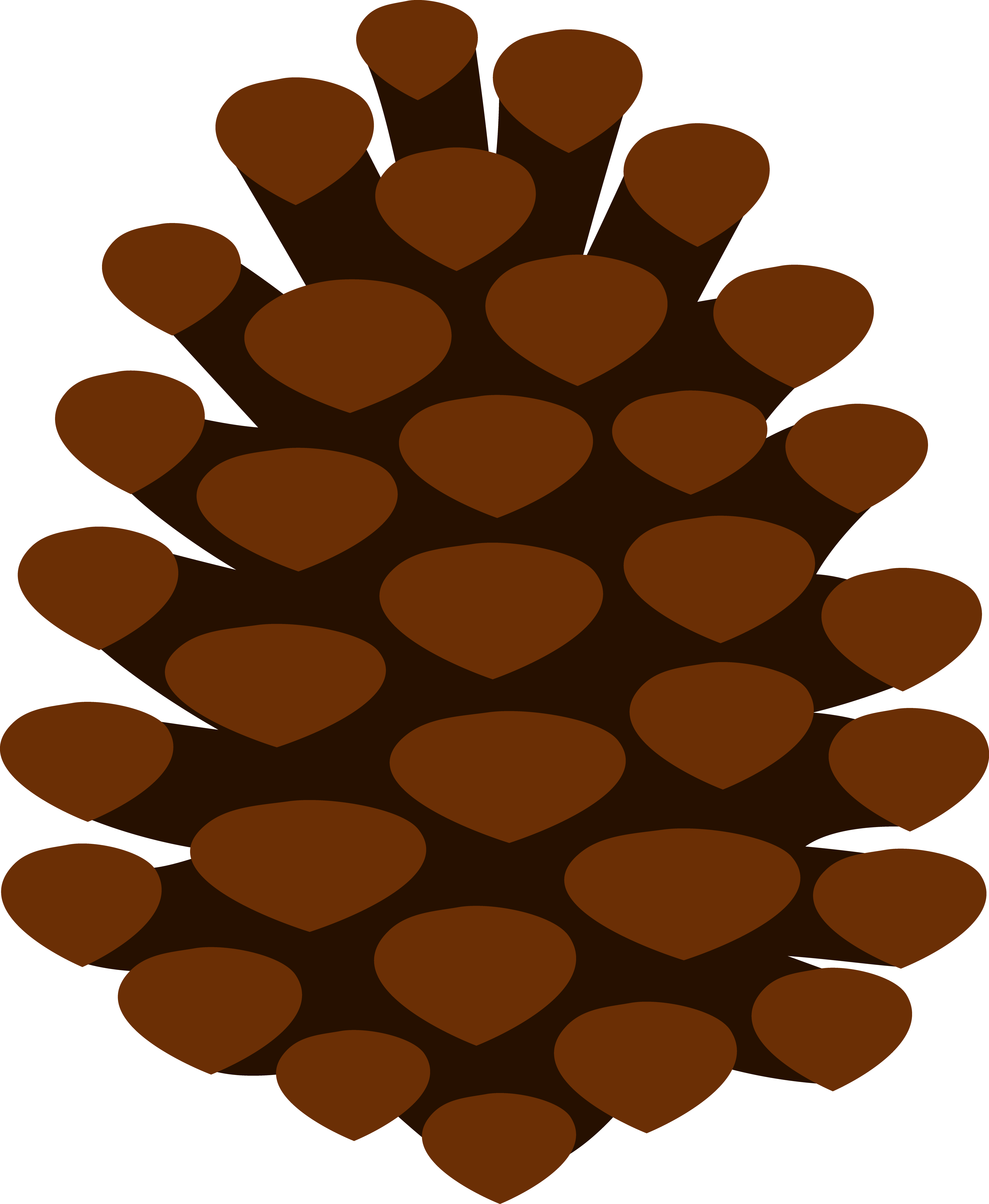 Pinecone clipart cartoon. Simple pine cone free
