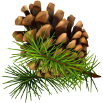 Pinecone clipart pinecone garland. Spring greenery decor green