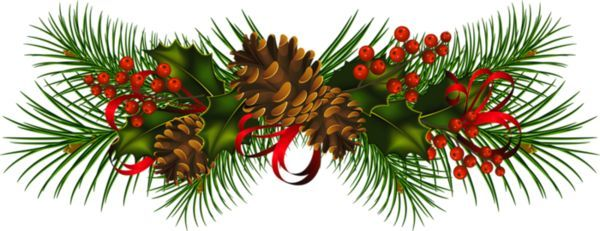 Pinecone clipart pinecone garland. Transparent christmas pine cones