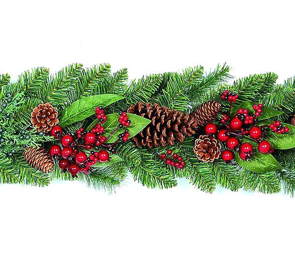 Pinecone clipart pinecone garland. Christmas pictures premier natural