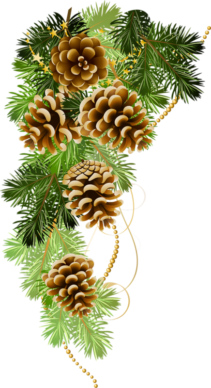 Christmas decorated pine cones png. Pin by lana on