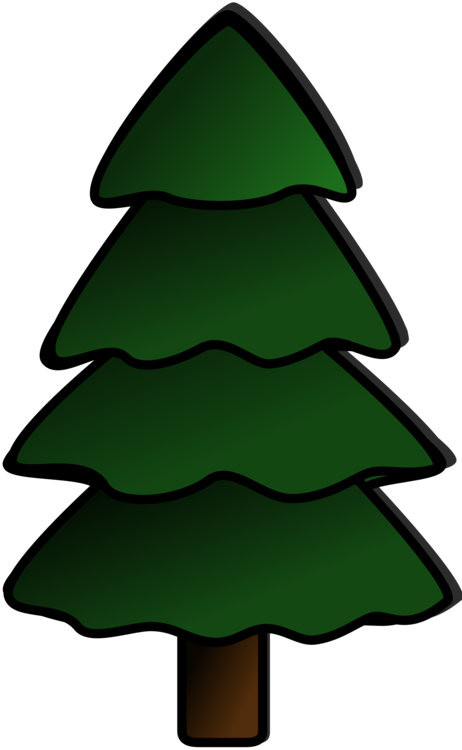Eastern white pine tree. Evergreen clipart blue spruce png royalty free download