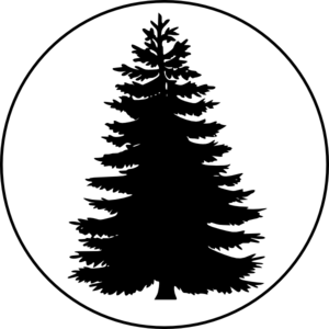 Pinetree vector redwood tree. In a circle large
