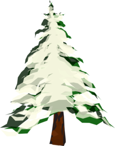 Pinetree vector snow tree. With clip art at