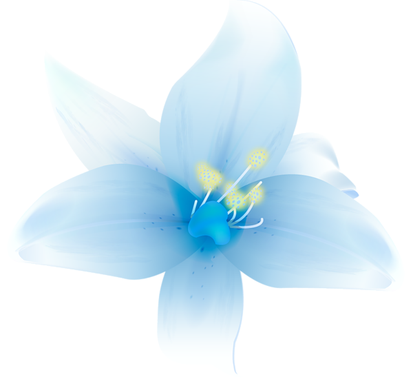 Pink and blue flowers png. Large white lilium clipart