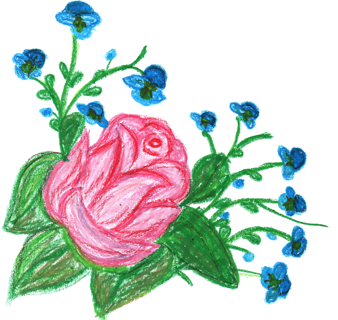 Pink and blue flowers png. Crayon flower transparent