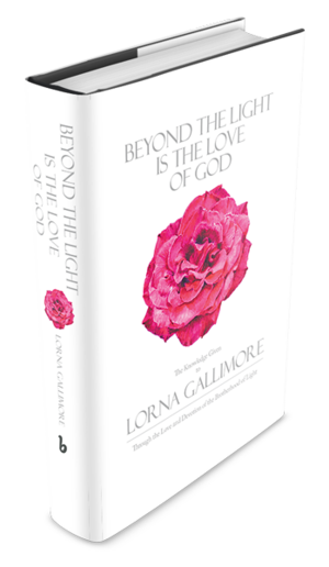 Pink book spine png. Beyond the light is