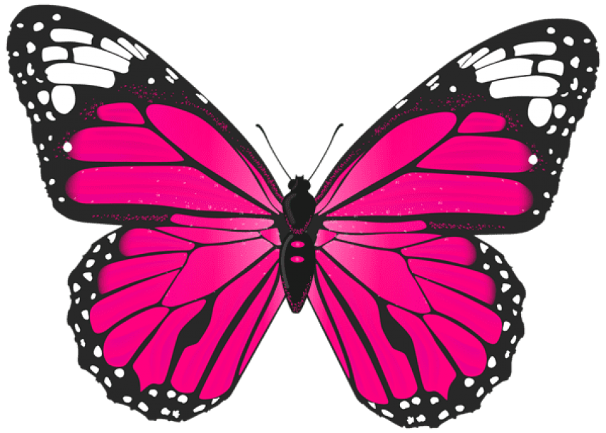 Butterflies pink png. Butterfly free images toppng