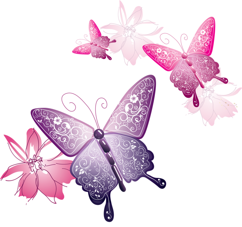 Pink butterflies png. Butterfly download number daily