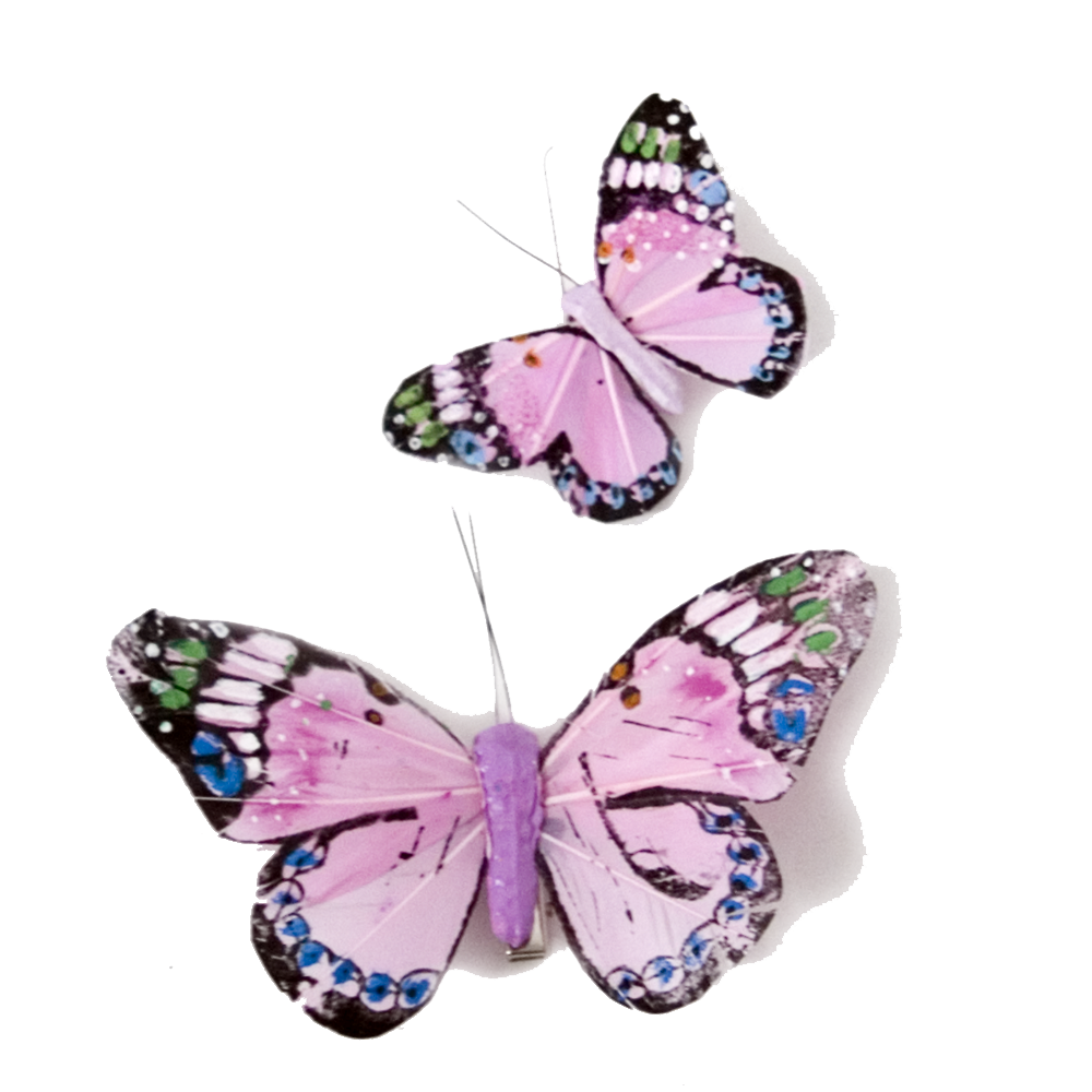 Pink butterfly png. Transparent mart