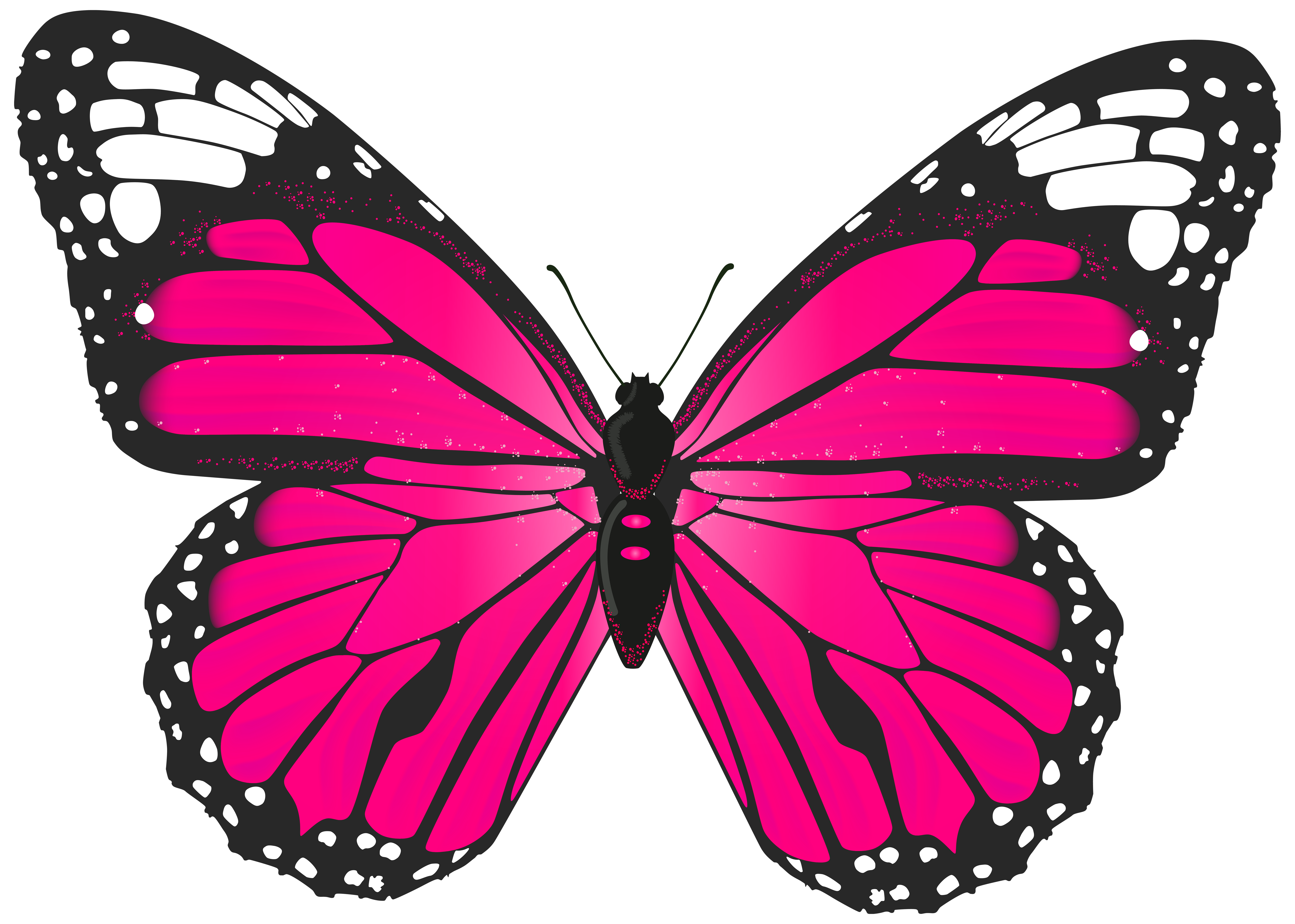 Pink butterfly png. Transparent clip art image