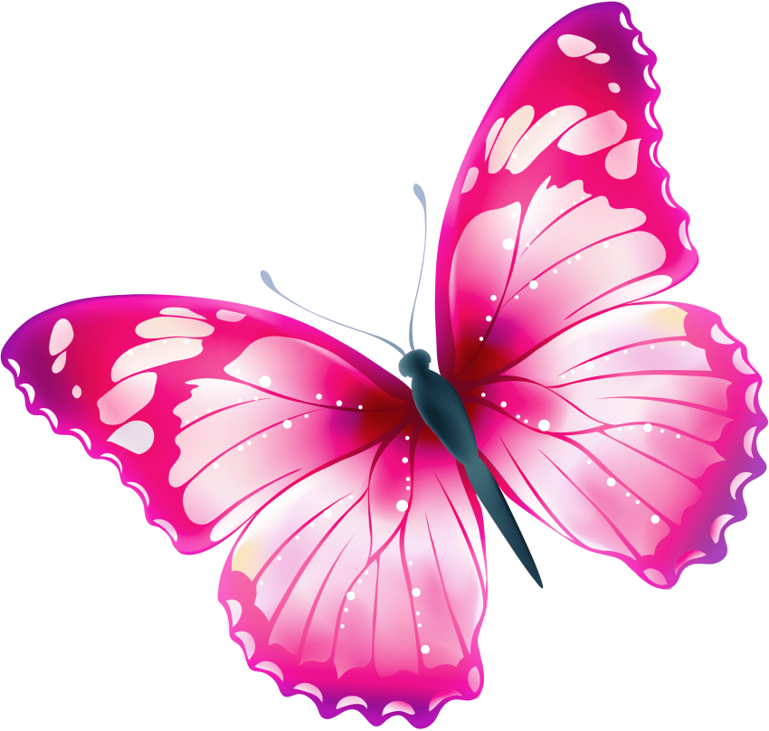 Pink butterfly png. Download images background toppng
