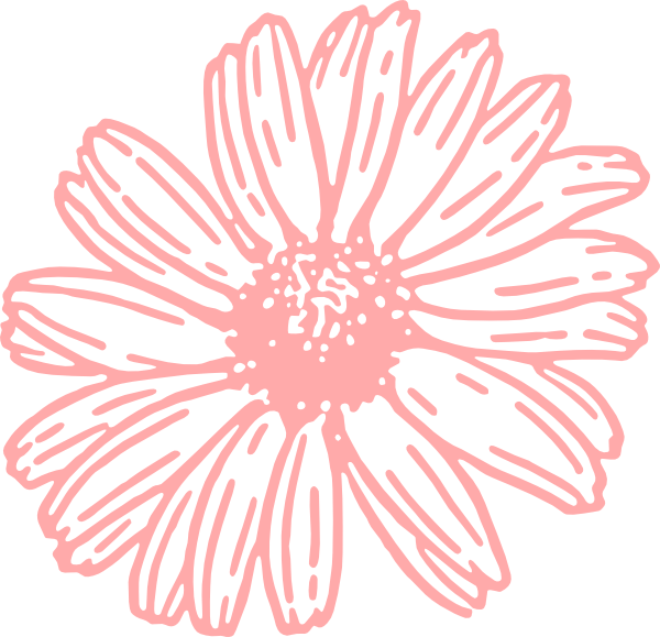 Pink daisy png. Clip art at clker